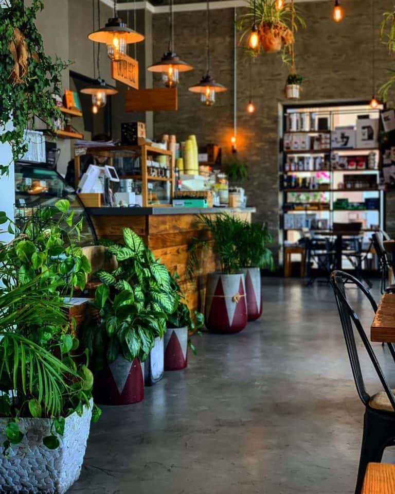 The top 5 best coffee shops in doha