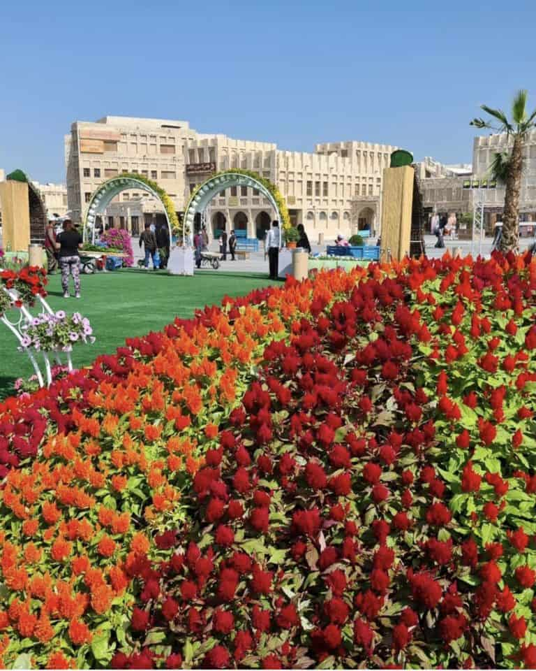 What Is The Souq Waqif Flower Festival?